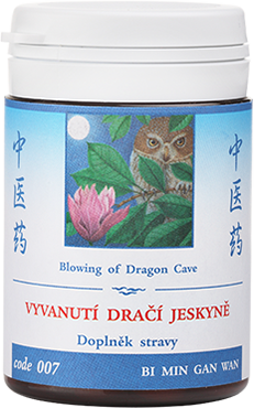 Blowing of Dragon Cave (code 007)