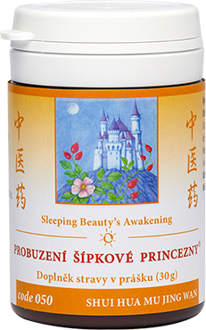 Sleeping Beauty's Awakening (code 050)