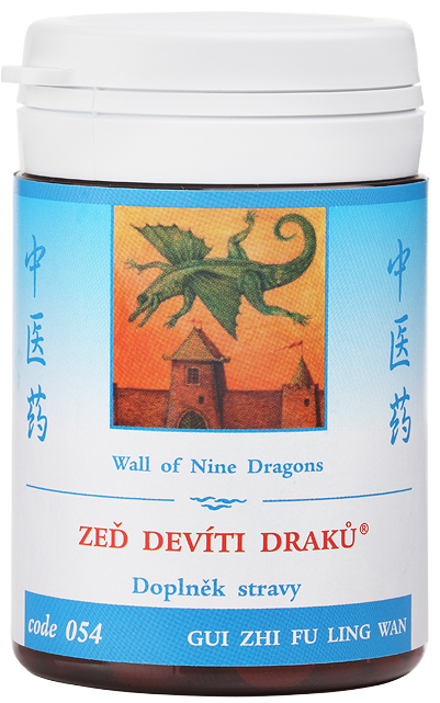 Wall of Nine Dragons (code 054)