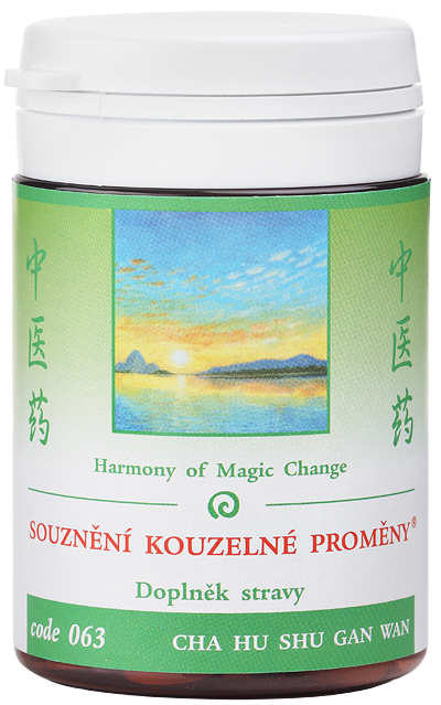 Harmony of Magic Change (code 063)