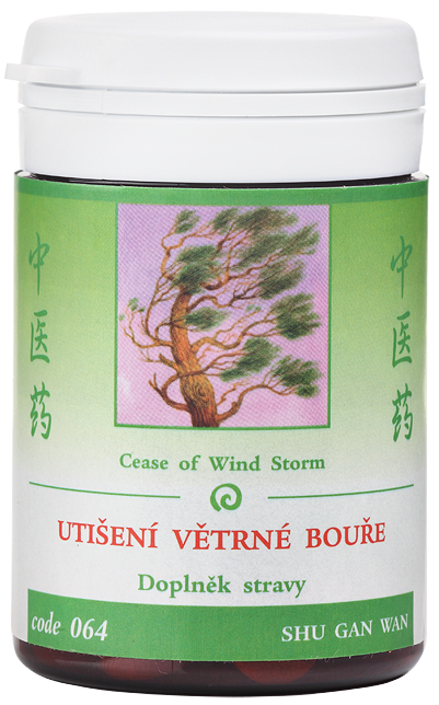 Cease of Wind Storm (code 064)